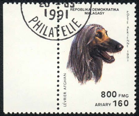 REPUBLICA MALAGASY - CIRCA 1991: A stamp printed in REPUBLICA MALAGASY shows Levrier afghan, from series Breeds of dogs , circa 1991 photo