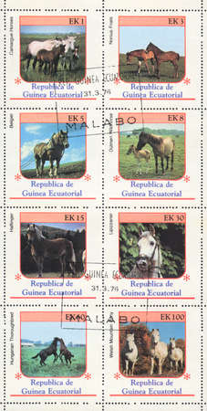 lipizzan horse: EQUATORIAL GUINEA - CIRCA 1976: A stamp printed in EQUATORIAL GUINEA  shows  breeds of horses , circa 1976