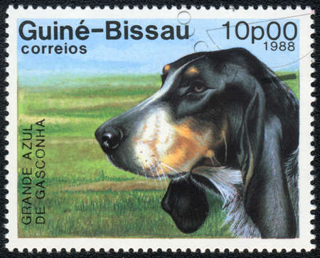 GUINEA-BISSAU - CIRCA 1988: A stamp printed in GUINEA-BISSAU  shows  Griffon Bleu de Gascogne, from series Breeds of dogs , circa 1988 Stock Photo - 13677056