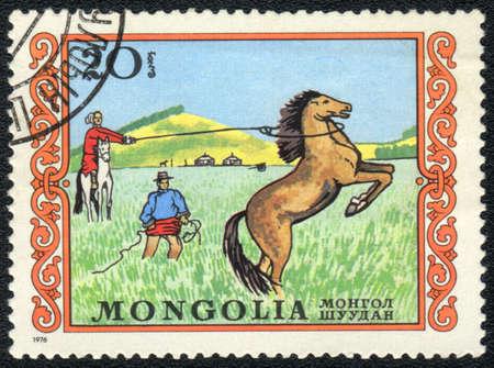 mongolia horse: MONGOLIA - CIRCA 1976: A stamp printed in MONGOLIA  shows  a an unbroken horse bucks , series, circa 1976 Stock Photo