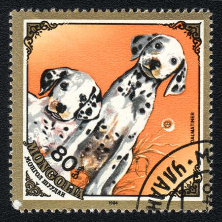 MONGOLIA - CIRCA 1984: Un sello impreso en Mongolia demuestra un d�lmatas; serie raza de perros, alrededor del a�o 1984 Foto de archivo - 13707366