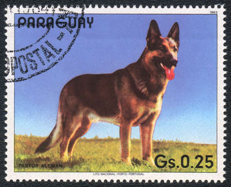 PARAGUAY - CIRCA 1983: A stamp printed in PARAGUAY  shows a  German Shepherd Dog , from series Breed of dogs,  circa 1983 photo