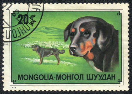 MONGOLIA - CIRCA 1978: A stamp printed in MONGOLIA  shows  a Mongolian shepherd, circa 1978 Stock Photo - 13707364