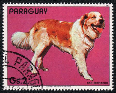 st  bernard: PARAGUAY - CIRCA 1983: Un sello impreso en PARAGUAY muestra un San Bernardo, de la raza de los perros de la serie, alrededor del a�o 1983