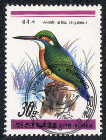 DPR KOREA - CIRCA 1988: A stamp printed in DPR KOREA shows  Common Kingfisher (Alcedo atthis bengalensis), from series Birds, circa 1988 photo