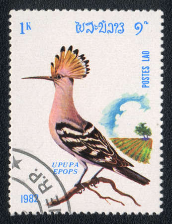 LAOS - CIRCA 1982: A stamp printed in LAOS shows  Hoopoe (Upupa epops), from series Birds, circa 1982 Stock Photo