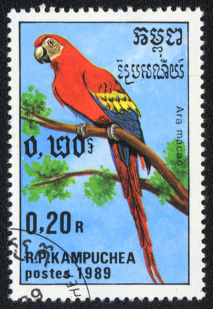 KAMPUCHEA - CIRCA 1989: A stamp printed in KAMPUCHEA  shows a Scarlet Macaw (Ara macao), from series Breeds of parrots , circa 1989 Stock Photo - 13741237