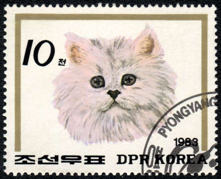 DPR KOREA - CIRCA 1983: A stamp printed in DPR KOREA  shows a  head of Persian cat, from series Breeds of cat, circa 1983 photo