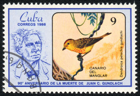 CUBA - CIRCA 1986: A stamp printed in CUBA shows Juan Gundlach and Yellow Warbler (Dendroica petechia gundlachi), circa 1986 Stock Photo - 13744081