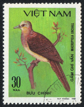 VIETNAM - CIRCA 1980: A stamp printed in VIETNAM  shows Barred Cuckoo-Dove (Macropygia unchall), from series Tropical Pigeon, circa 1980 Stock Photo - 13775853