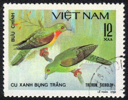 VIETNAM - CIRCA 1980: A stamp printed in VIETNAM  shows White-bellied Green Pigeon (Treron sieboldi), from series Tropical Pigeon, circa 1980