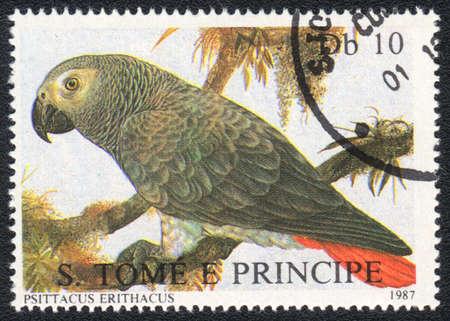 principe: SANTO TOM� Y PR�NCIPE - CIRCA 1987 Un sello impreso en Santo Tom� y espect�culos PRINCIPE loro del gris africano Psittacus erithacus, de la serie, alrededor del a�o 1987
