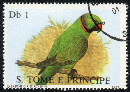 SAO TOME AND PRINCIPE - CIRCA 1987: A stamp printed in SAO TOME AND PRINCIPE   shows Fischers Lovebird (Agapornis Fischeri), from series, circa 1987 photo