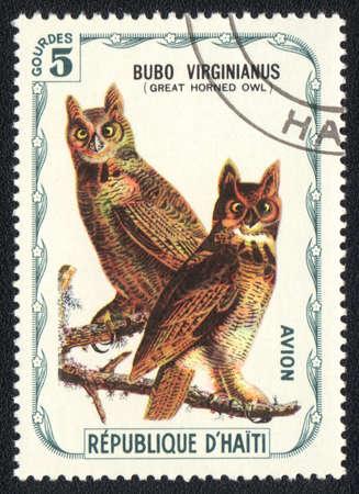 REPUBLIC HAITI - CIRCA 1980: A stamp printed in REPUBLIC HAITI shows Bubo virginianus (Great horned owl), from series, circa 1980 photo