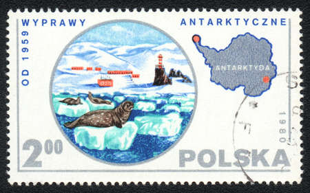 POLAND - CIRCA 1980: A stamp printed in POLAND   shows Expedition to Antarctica, from series, circa 1980  photo