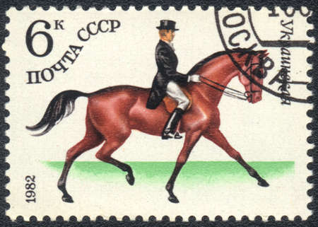 USSR - CIRCA 1982  A stamp printed in USSR shows  a  Ukrainian sports horse for Dressage, series horse breed in a equestrian sport, circa 1982