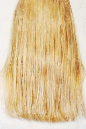 cabello rubio: Pelo largo y rubio
