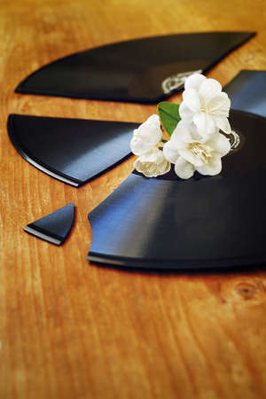 recollection: Artificial flowers on a broken gramophone record Stock Photo