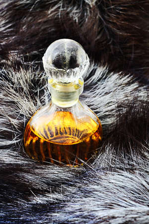 silver fox: Botella de la vendimia del perfume sobre la piel de zorro plateado