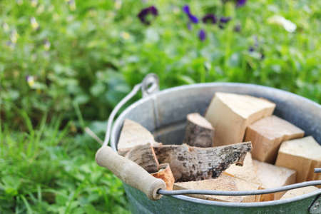 The bucketful of the birchen firewood in the summer against a background green plant