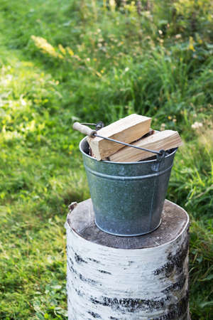 The metal bucket with the firewoods located on the birch log against a background green plant. Concept preservation of the environment.