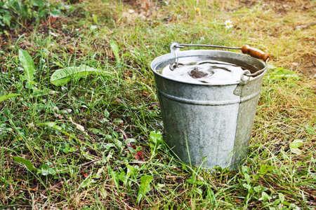 Old metallic bucket with rain water in the summer