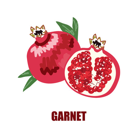 Illustration with the image of a garnet and garnet in a cut.