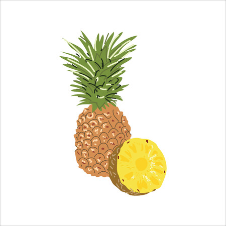 Illustration with the image of pineapple and pineapple in a cut.