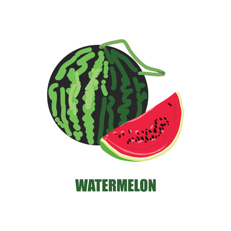 Illustration with watermelon and watermelon in a cut.