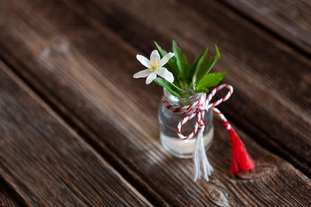 Fresh beautiful bouquet of the first spring forest anemone flowers with red and white cord martisor - traditional symbol of the first spring day on wooden background