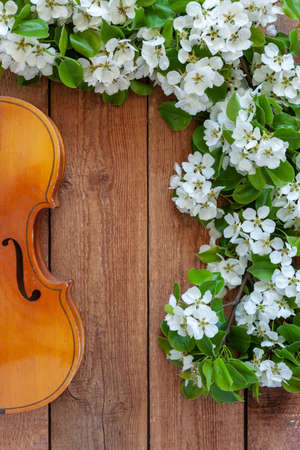 Old violin and blossoming apple tree branches. Top view, close-up on vintage wooden background
