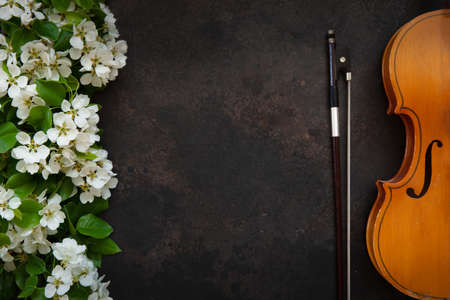 Old violin with fiddlestick and blossoming apple tree branches. Top view, close-up on dark background Reklamní fotografie