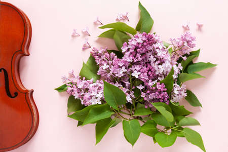 Old violin and Bouquet of fresh fragrant pink lilac on  pink paper background. Top view, close-up. Reklamní fotografie