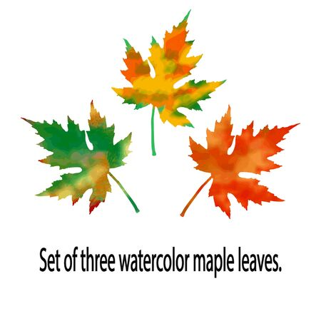 A set of three watercolor maple leaves, made in red-orange and orange-green colors. Well suited as a design element, pattern basis.