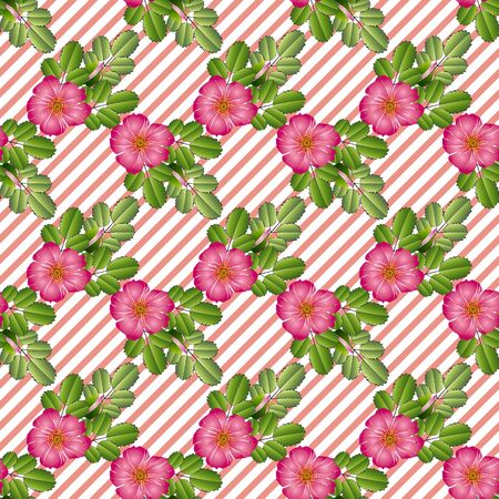 Seamless pattern of bright pink-purple flowers of wild rose and leaves, on a coral-white background with a slanting strip. Great for decorating fabrics, textiles, printed materials, advertising.