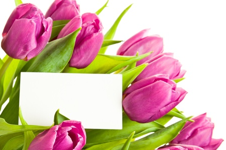 A bunch of tulips with business card.  Stock Photo