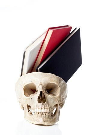La conoscenza del concetto di acquisizione delle conoscenze