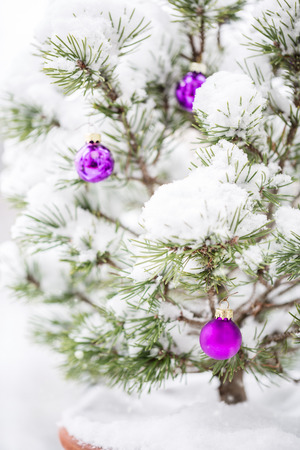 Christmas tree and baubles covered with snow.