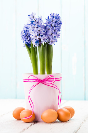 Blue hyacinth and easter eggs.
