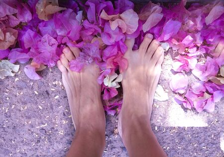 Female feet standing on a neutral background with a scattering of exotic flowers in pink orange lilac tones