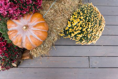 Autumn composition with ripe pumpkins and flowers. wood decks, firewood, straw on a background of wood.Thanksgiving holiday concept. Autumn harvest, fall vegetables. texture for design
