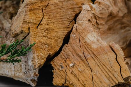 close-up wooden stack wall background, firewood pattern tree