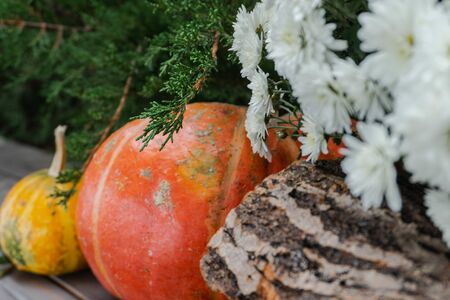 Beautiful autumn composition with ripe Orange and yellow pumpkins, wooden decks and flowers on the background of greenery, green grass, bush. Stand on a wooden base. Thanksgiving holiday Halloween con