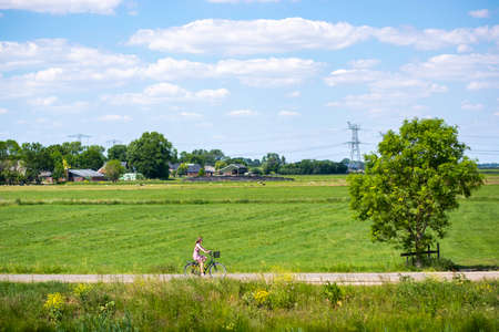 Bike ride in the countryside. Woman wearing summer dress riding bicycle on rural road on a sunny day. Farms with farm animals in the background Imagens