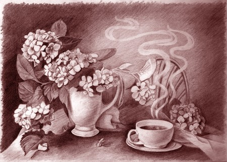 Pencil drawing of still life cup of hot coffee and flower