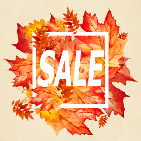 for print: collection beautiful colorful autumn leaves for print