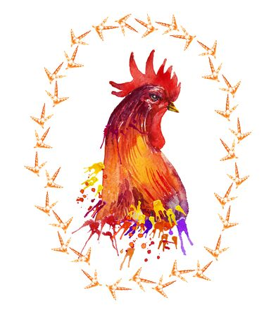 Rooster. Rooster Year. Chinese New Year of the Rooster. Watercolor Rooster New Year card. 版權商用圖片 - 67958737