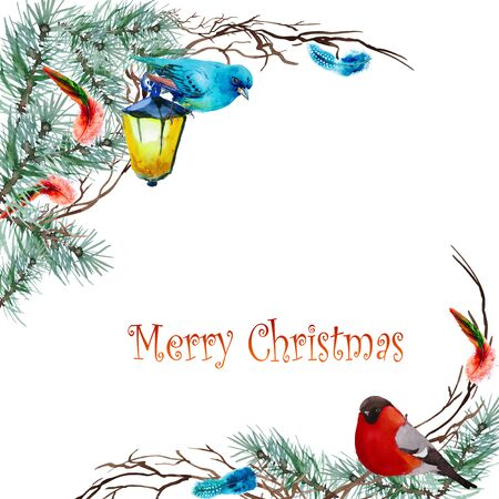 Christmas background with fir twigs and birds 版權商用圖片