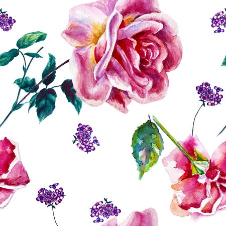 Flowers rose with leaves, watercolor, illustration. Seamless pattern 版權商用圖片