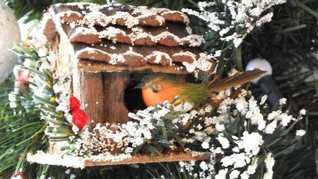 maison oiseau: robin bird house d�coration de No�l